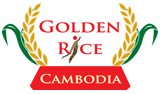 Golden Rice Cambodia